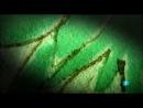 El_codice_Voynich._El_manuscrito_mas_misterioso_del_mundo.-[YT-f18][YG9CV4t0TlA].mp4