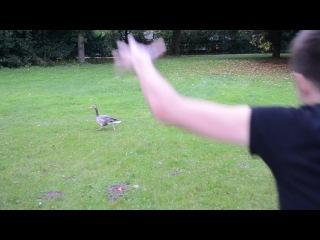 08 В городском парке (охота на гусей)