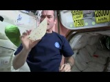 How To Make A Peanut Butter and Honey Sandwich In Space - Video