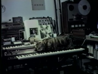 Chat écoutant la musique (Chris Marker)