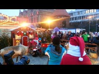 Санта Клаус и настоящие северные олени в старом городе Гданьска