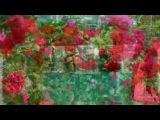 Олег Тихомиров ВСПОМНИ (муз. и сл. О.Л.Тихомиров) автор видео Светлана Трунилова