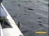 Рыбалка и охота в Карелии-4