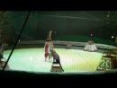 """Ну и маленький ролик из циркового шоу братьев Запашных """"Золотой орех"""" с дрессурой гепардов."""
