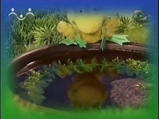 Сказка про лягушку 2 история