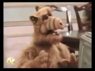 Вилли и телевизор (Альф) льф Вилли и ТВ группа Альф. Alf. Все серии, цитаты.