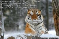 Сергей Иванович, 25 августа 1995, Одесса, id113014136