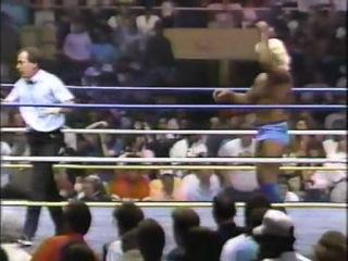 WWEWM WrestleWar 1989 Ricky Steamboat c vs Ric Flair NWA World Heavyweight Championship