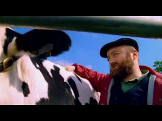 Лучший день в моей жизни когда взорвалась корова