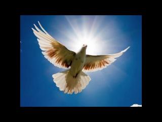 Аффирмации, которые настраивают душу на спокойствие и мир.