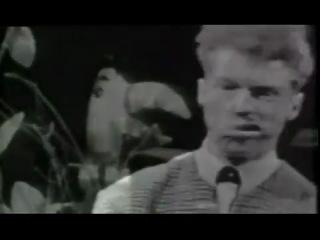 The Trashmen - Surfin Bird - Bird is the Word 1963 (RE-MASTERED) (ALT End Video) (OFFICIAL VIDEO)