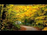 «осень» под музыку Звуки природы - Шум дождя и спокойная мелодия. Picrolla
