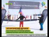 Победительница марафона в Антарктиде и на Северном полюсе, веганка Фиона Оукс