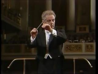 Beethoven Violin concerto (Perlman Barenboim)