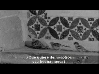 Pajaritos Y Pajarracos (Uccellacci E Uccellini) (Pier Paolo Pasolini 1966) VOSE