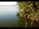 Video-2012-08-12-07-17-05