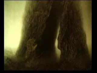 Ёжик в тумане - французские субтитры