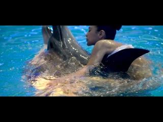 дельфины! Мария Шемотюк by Александр Мельник