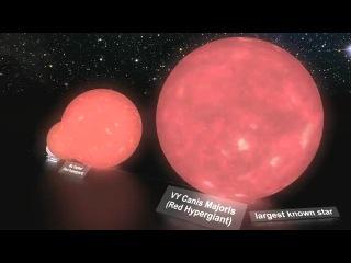 Красивое сравнение размеров планет и звёзд