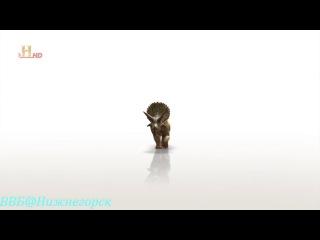 History «Эволюция. Битва за жизнь - Кожа» (серия 5, 2008)