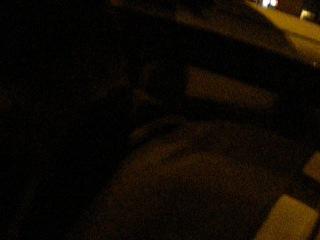 Hellowin(переполох) 3.11.2012 г.Тула пр.Ленина ДЕПЫ,КАК ПРОЕХАТЬ В ЧАСТИЛИЩЕ??)))