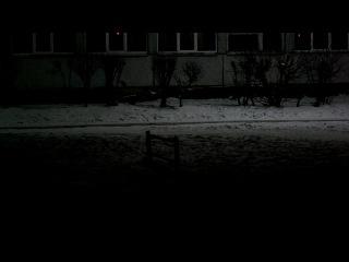 Динамон ~ 15г ; Детонатор ~ 0.25г ГМТД