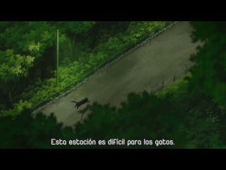 Darker than Black - OVA - HD SUB-ESP By: (anime-zonew.weebly.com)