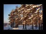 Зима в Карпогорах. январь 2014 видео-Мамонова М.А.