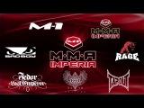 Франчайзинг MMA Imperia