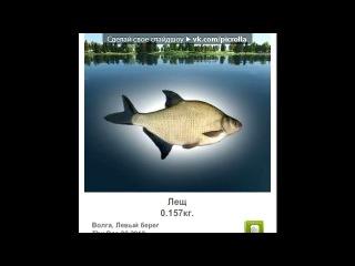 «Трофейная рыбалка» под музыку В контакте - Гимн контакта. Picrolla