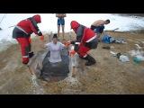 Купание на Крещение в Омске