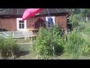 Лиля на даче