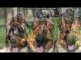 Без названия под музыку Drum And Bass - Music In Trance Style ----- ( Dance Hard Trance House Electro Drum And Bass Rap Psy Трек Прикольный Крутой Remix Офигенный Музон Реп Рэп Техно Techno Попса Popsa Самый Лучший 2011 Рингтон Охуенный Пиздатый Охрененский Песня Песенька D&ampampb Rnb Armin . Picrolla