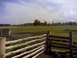 Ограда подвела