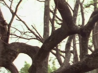 Девочка из завтра-1 Сезон 7 серия . The Girl From Tomorrow