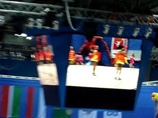 13 февраля 2014 депутат Государственной Думы РФ Алина Кабаева проводит в Нижнекамске пятый международный турнир по художественной гимнастике