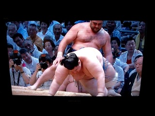 Борьба сумо по японскому телевидению.