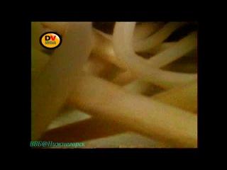 BBC «Паразиты в организме человека» (1 часть)