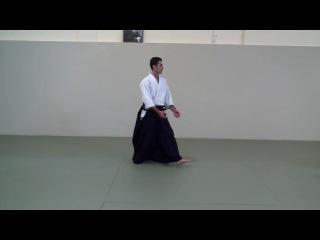 Vassilis Nykteris Seminar in Aikido Academy 20.01.2013