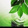 Экологическая чистая вода в Вашем доме!