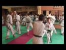 Seminar Teruo CHinena 20-28.10.13