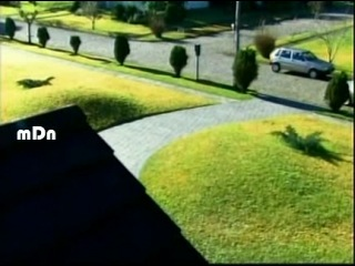 Duas Caras Два лица (2008) Episode 5