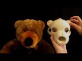 Needle Felting a Teddy Bear Skull- Unnatural History in the Making