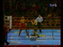 2001-03-24 Vаssiliу Jirоv vs Теrrу МсGrооm (IВF Сruisеrwеight Тitlе)