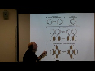 Stuart Hammeroff Quantum cognition and brain microtubules January 9 2013