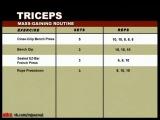 Muscle and Fitness Training System - ARMS (Бицепсы, Трицепсы) | Как правильно накачать (тренировать) руки