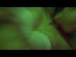 HD: Нарезка из разных фильмов с Джессикой Альбой!
