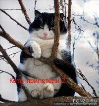 Андрей Овчинников, 11 августа , Смоленск, id74853717