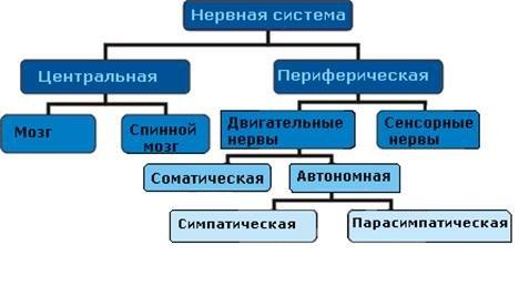 Егор Грозных | ВКонтакте.