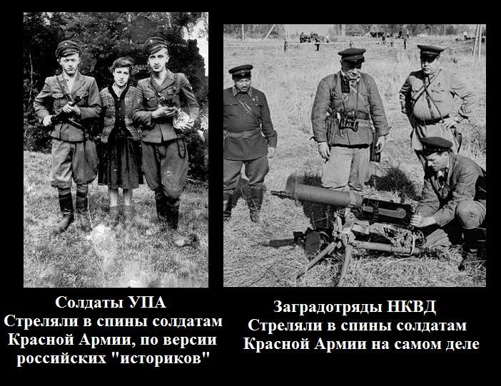 Российские военные на Донбассе обстреляли боевиков при попытке сдаться в плен: один убит, двое ранены, - разведка - Цензор.НЕТ 2894